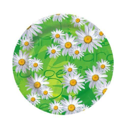 Jednorazové taniere